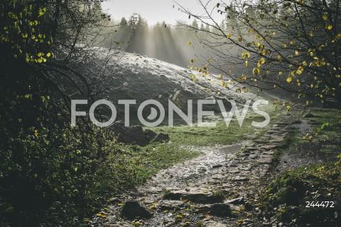 01.11.2020 PIENINY <br />JESIEN W PIENINACH <br />N/Z WAWOZ HOMOLE <br />